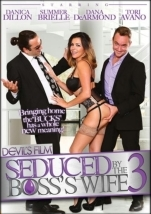 裏DVD SEDUCED BY BOSSS WIFE 03