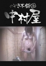 裏DVD Summer beaches!Toilet peeping!Vol.11